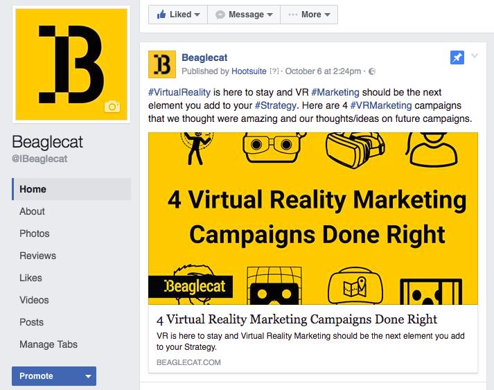 Beaglecat Facebook feed