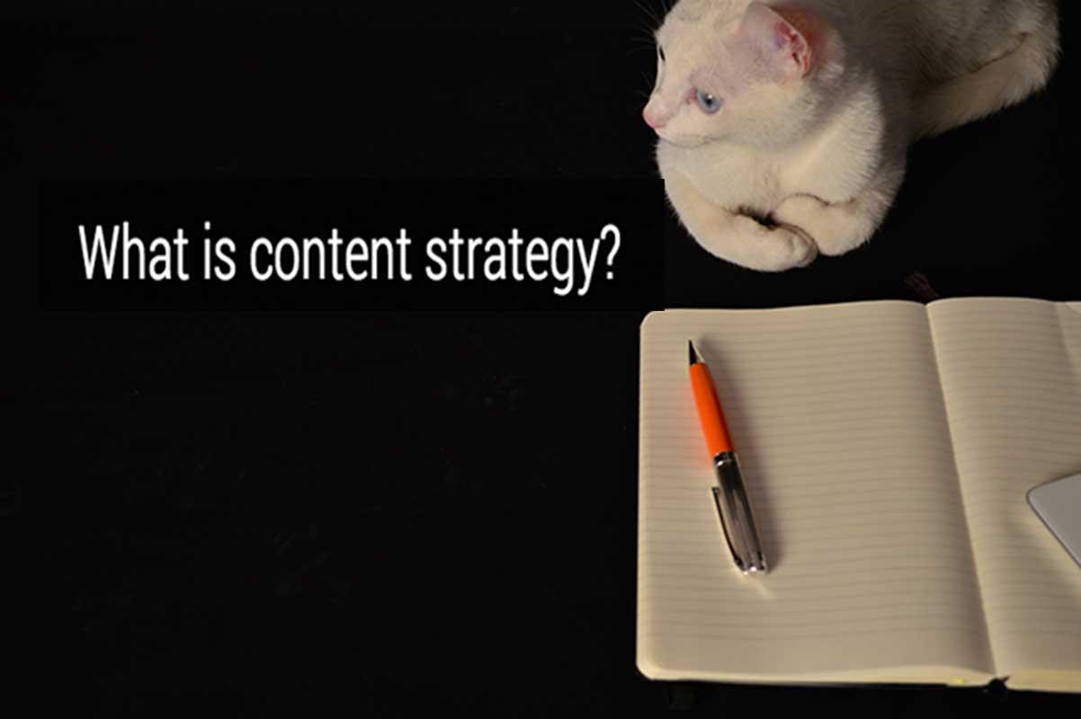 cat and agenda