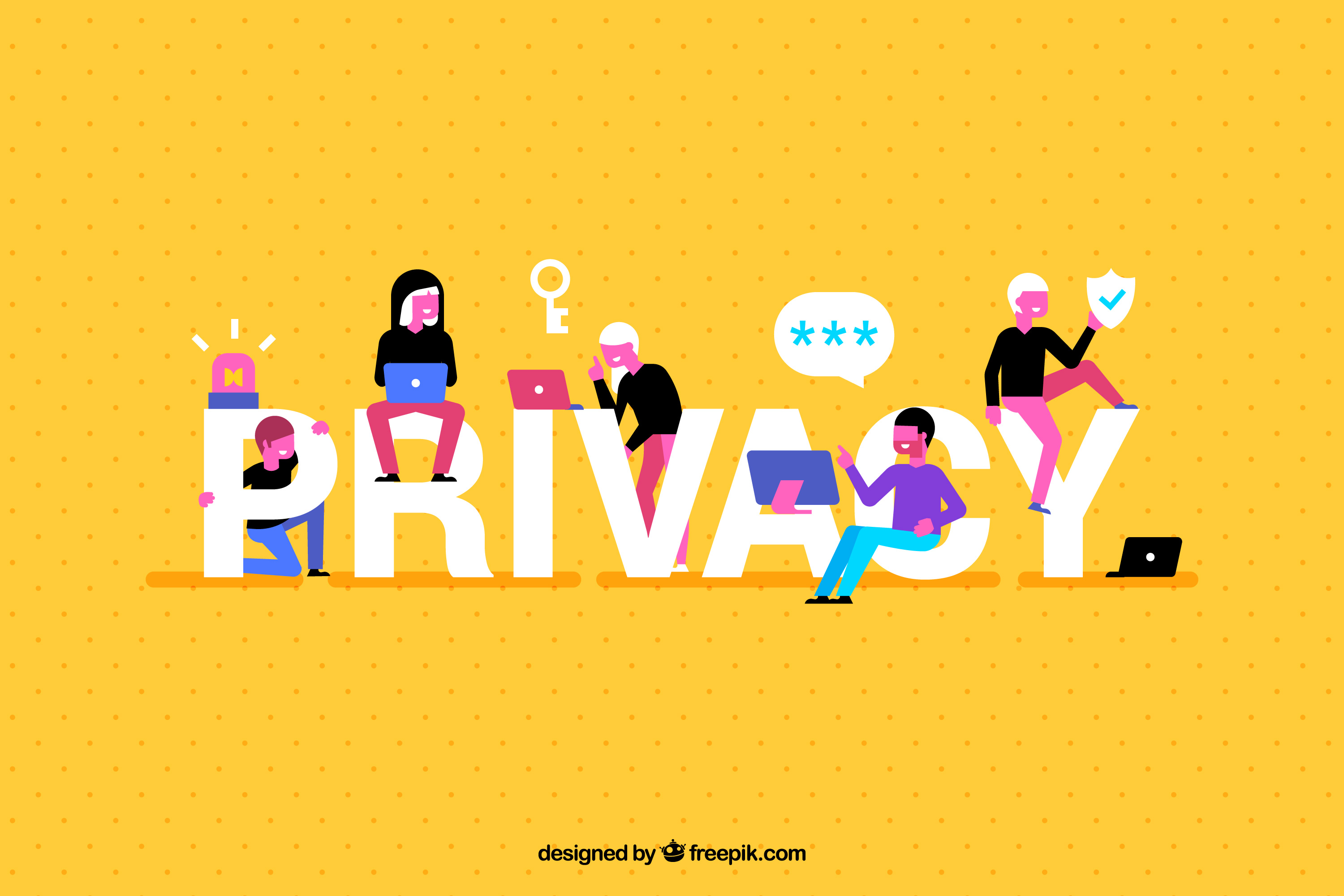 data privacy company